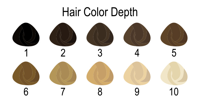 What's Your Natural Hair Level