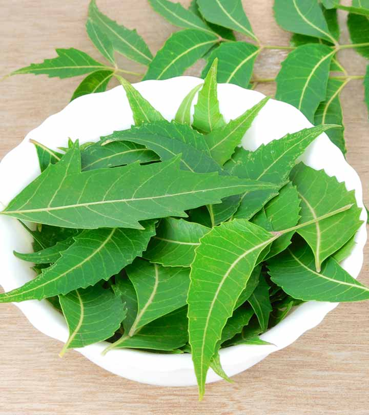 Benefits of Eating Neem on Empty Stomach in Hindi