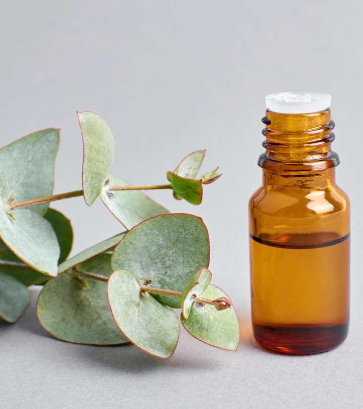 नीलगिरी तेल के फायदे और नुकसान – Eucalyptus Oil (Nilgiri Tel) Benefits and Side Effects in Hindi