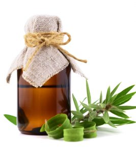 Tea Tree Oil For Psoriasis: Benefits, Uses, And More