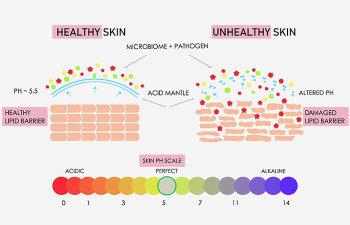 What Damages The Skin Barrier