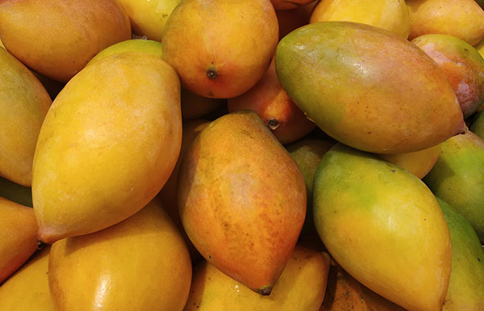 Totapuri Mangoes Karnataka