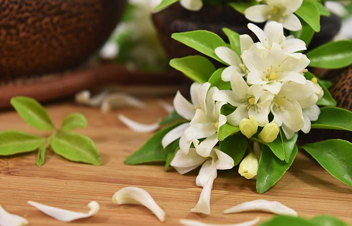 13-Best-Flowers-for-Skin-Care-in-Hindii