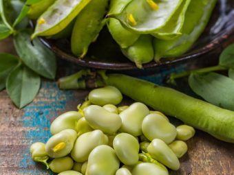 Lima Beans Nutrition Benefits, Preparation, And Risks