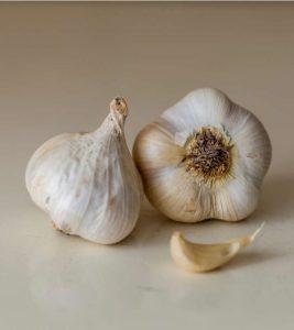 Garlic (Lahsun) in Hindi