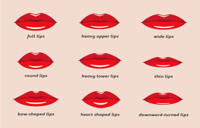 The Most Common Lip Shapes