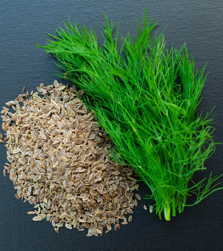 सोआ के 12 फायदे, उपयोग और नुकसान – Dill Benefits and Side Effects in Hindi