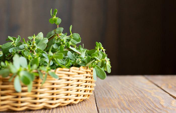 Health Benefits of Purslane