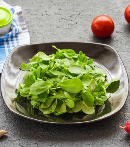 Purslane Benefits And Side Effects: A Comprehensive Guide