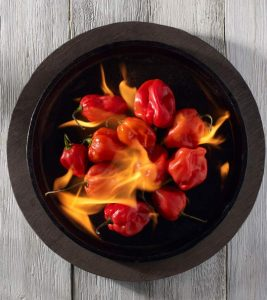 What Are The Health Benefits Of Habanero Peppers?
